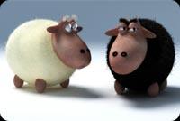 Cừu Trắng Cừu Đen Mẫu Nền Thư