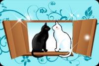 Cao Cao Bên Cửa Xổ, Có 2 Mèo Hôn Nhau Mẫu Nền Thư