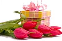 Hoa Và Quà Tặng Sinh Nhật Bạn Mẫu Nền Thư