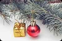 Khung Hình Noel Mẫu Nền Thư