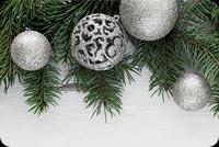 Giáng Sinh Trân Châu Màu Bạc Mẫu Nền Thư