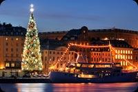 Cây Thông Noel Trên Bến Cảng Mẫu Nền Thư