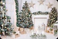 Giáng Sinh Màu Trắng Mẫu Nền Thư