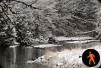 Ảnh Động Cảnh Hồ Mùa Đông Mẫu Nền Thư