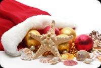 Đón Mừng Giáng Sinh Năm Nay Mẫu Nền Thư