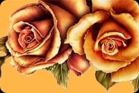 Hoa Hồng Vàng Mẫu Nền Thư