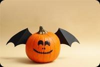 Pumpkin Cánh Dơi Mẫu Nền Thư