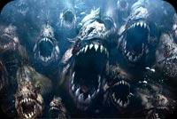 Cá Piranha Kinh Hoàng Mẫu Nền Thư