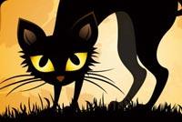 Mèo Đen Trong Đêm Halloween Mẫu Nền Thư