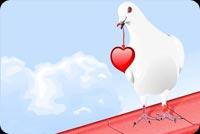 Chim Tình Yêu Mẫu Nền Thư