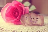 I Love You Mom Mẫu Nền Thư