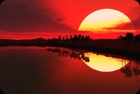 Bình Minh Mặt Trời Đỏ Mẫu Nền Thư