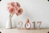 Chúc Mừng Năm Mới 2017 Mẫu Nền Thư