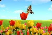 Sắc Màu Của Mùa Xuân Mẫu Nền Thư