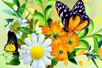 Chúc Một Mùa Xuân Tươi Vui Mẫu Nền Thư