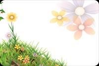 Hoa Xuân Đua Nở Mẫu Nền Thư