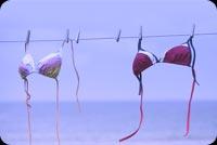 Áo Ngực Phơi Trên Biển Mẫu Nền Thư