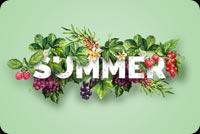 Summer Xanh Mẫu Nền Thư