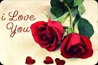 I Love You - Bông Hồng Tặng Em Mẫu Nền Thư