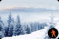 Ảnh Động Cảnh Đẹp Tuyết Rơi Mẫu Nền Thư
